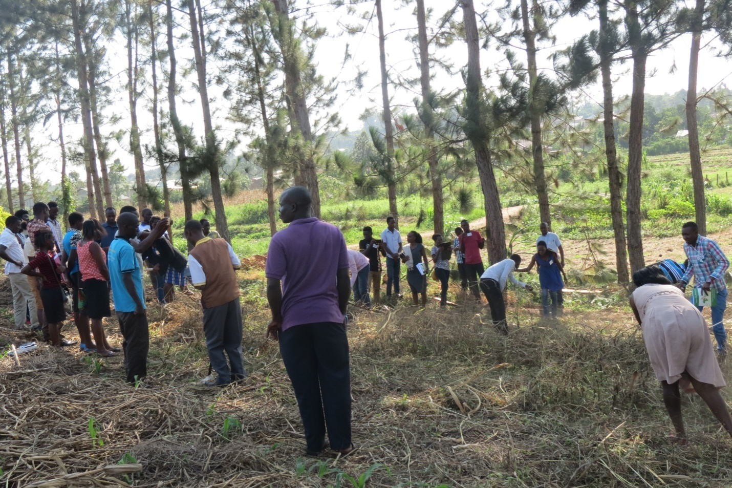 "Lessons on ""Farming God's Way"" helped participants see how to both preserve God's creation and bring forth profitable crop yields."